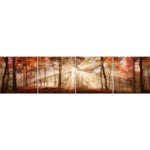 Sklenený panel 60/240 Forest-1 4-Elem
